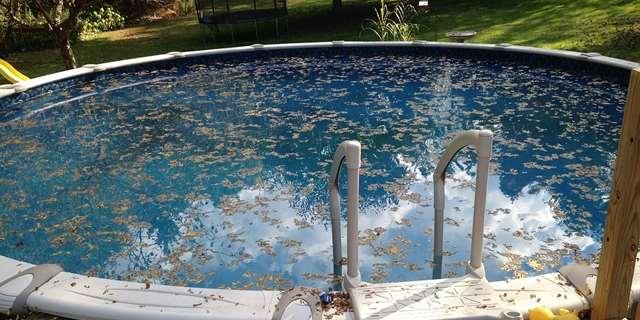 Ako vyčistiť vodu v bazéne?